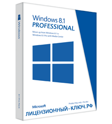 PROFESSIONAL windows 8
